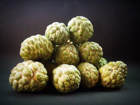 台湾の果物「釈迦頭」とは